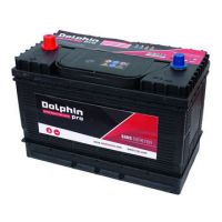 Batteries Dolphin Pro